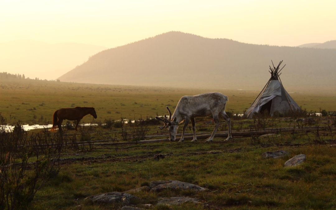 Passaggio in Mongolia